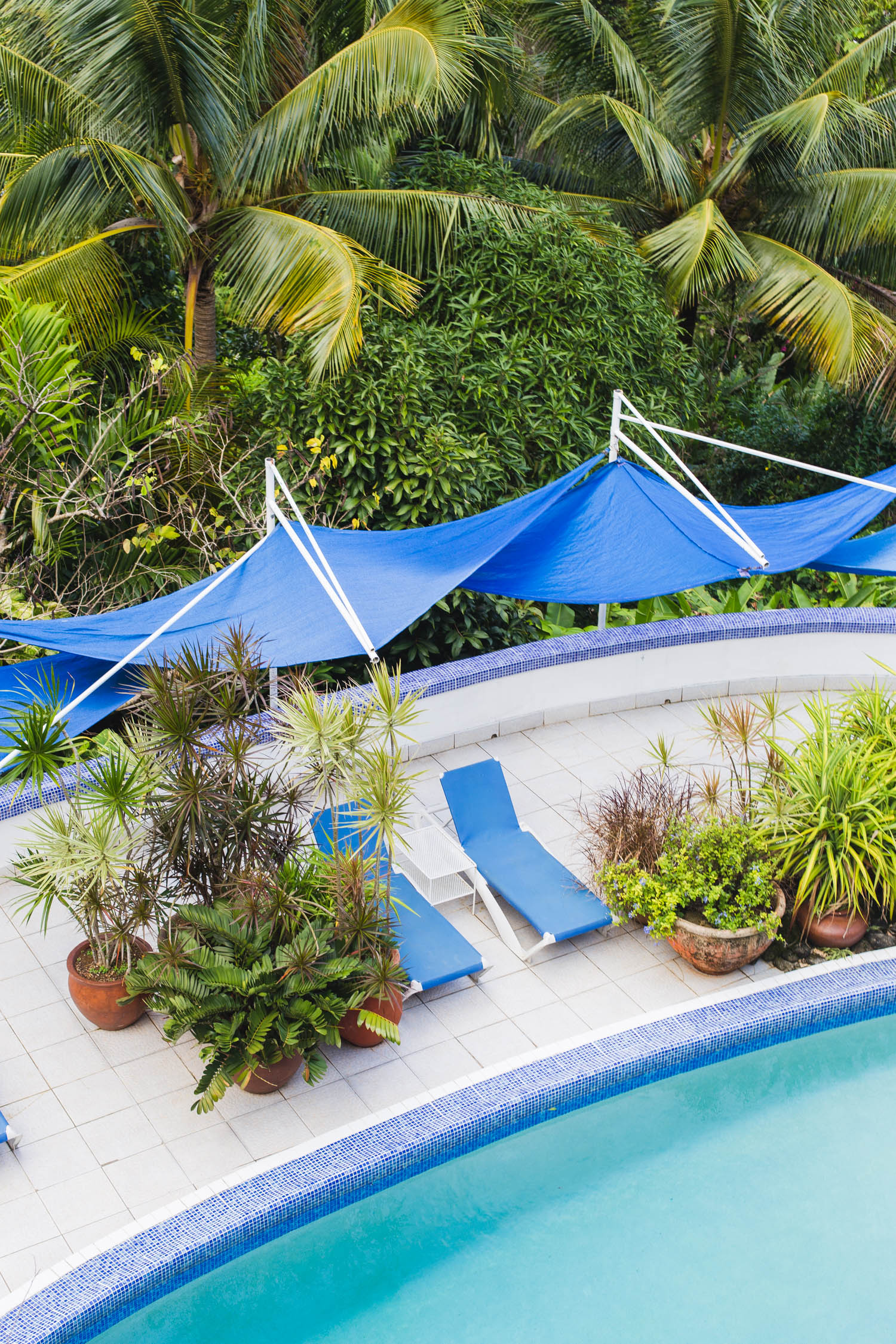 A complete guide to staying at the eco-friendly, boutique Hotel Mockingbird Hill in Port Antonio, Jamaica. It's ideal if you like birdwatching, sustainable tourism and being close to Frenchman's Cove beach.